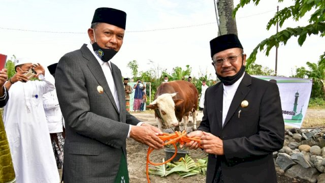 Gubernur Sulsel Nurdin Abdullah menyerahkan sapi kurban seberat 1 ton milik Presiden Joko Widodo ke Pemkab Jeneponto di Lapangan Jalan Lingkar Binamu Jeneponto, Jumat (31/7/2020).
