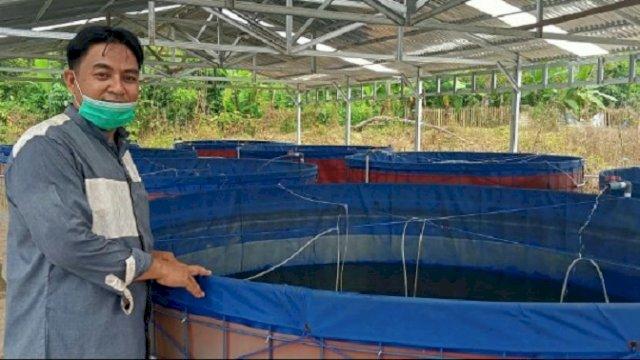 Ekonomi Pesantren di Sinjai Terbantu dengan Budidaya Lele Bioflok