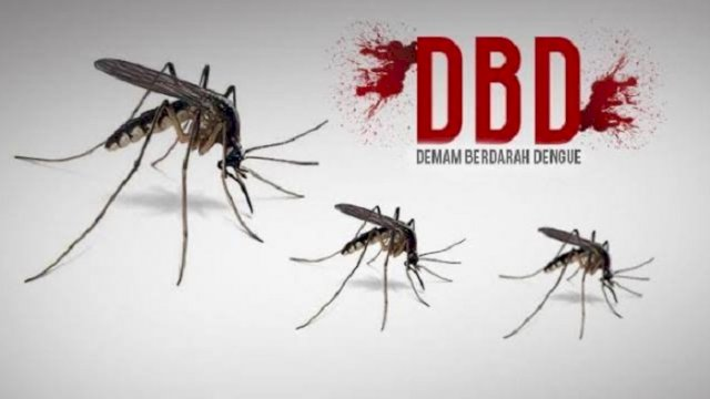 Waspadai Demam Berdarah! Dinkes Sulsel: Trend Peningkatan Kasus di Makassar dan Sidrap